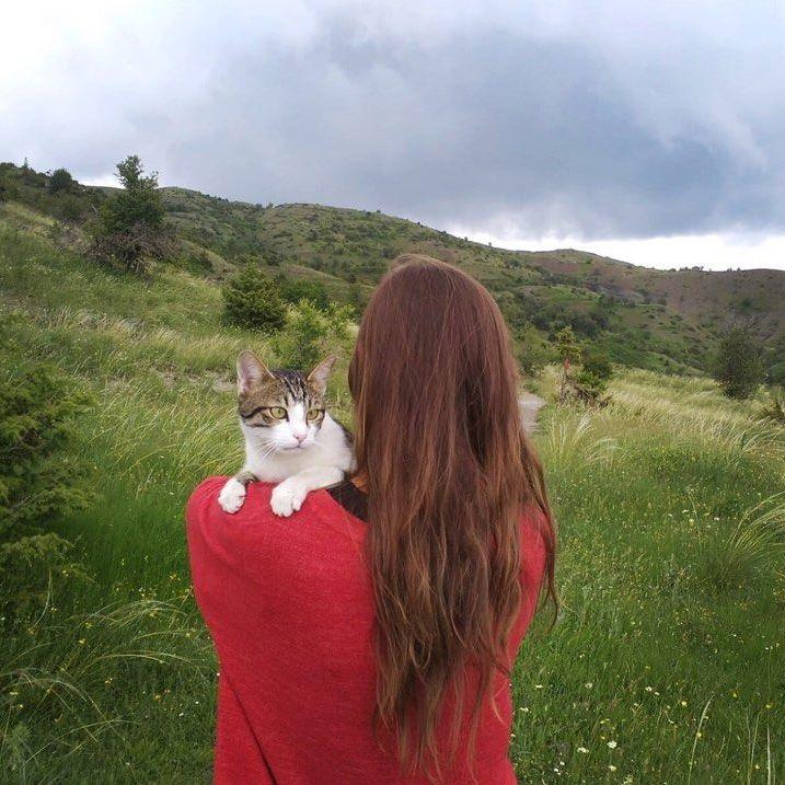 Van Life Greece - Cat