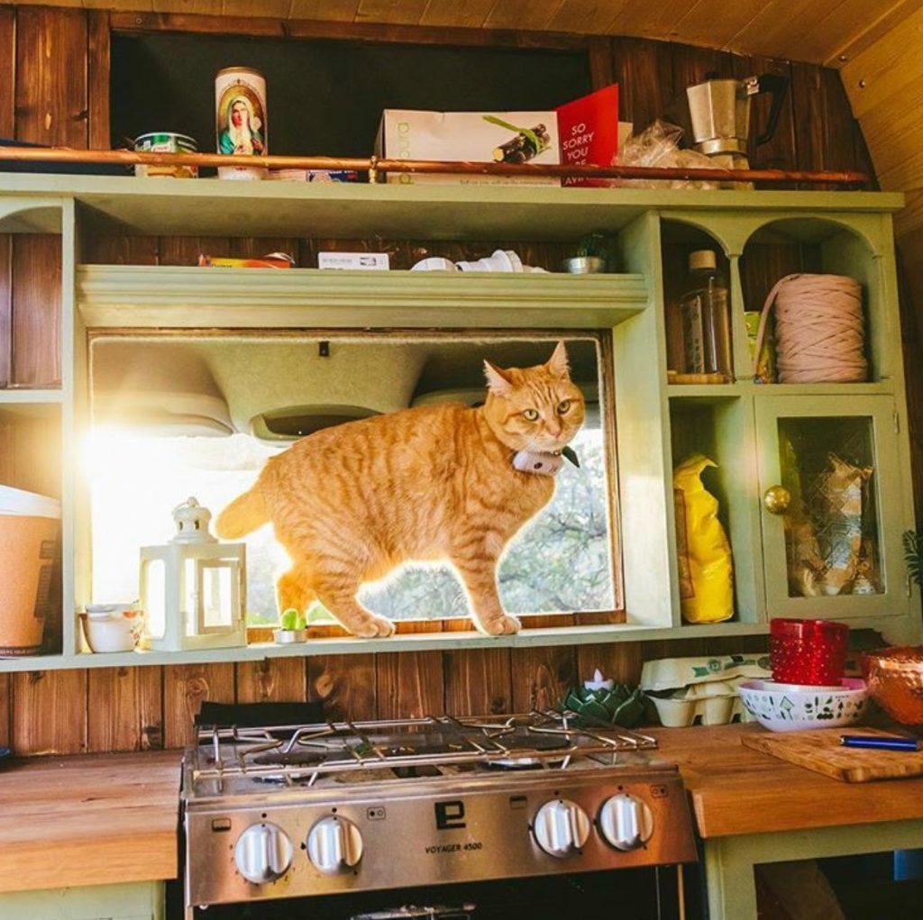 Enjoyable 25 Van Life Ideas For Your Next Campervan Conversion Andrewgaddart Wooden Chair Designs For Living Room Andrewgaddartcom