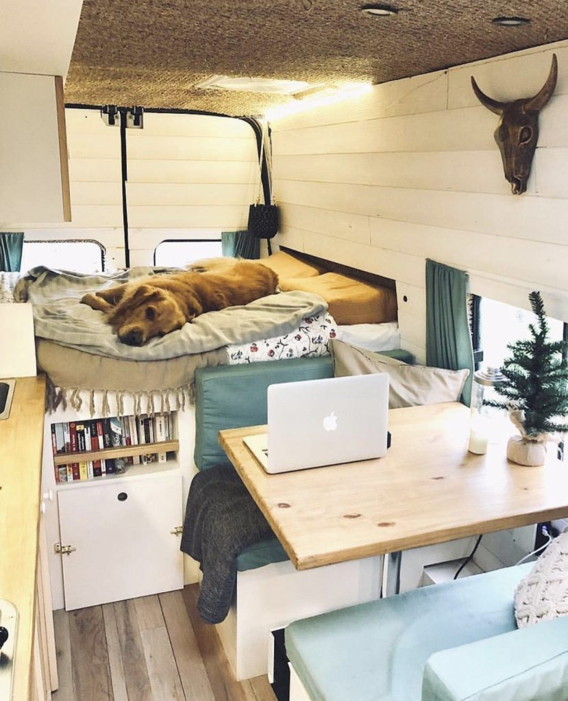 Best van - travelling shed