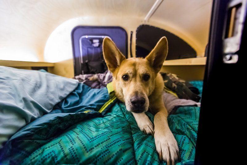 camper-trailers-oregon-3