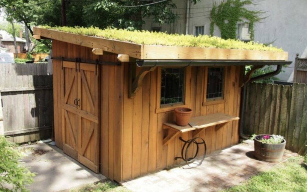 Shed house with living grass roof.